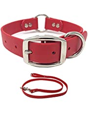 Regal Dog Products Waterproof Heavy Duty Dog Collar and Leash - Custom Fit Vinyl-Coated Webbing Water Resistant, Anti Odor & Easy to Clean Dog Collar with Double Buckle & D Ring for Small Dog or Puppy