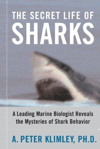 Shark Life - The Secret Life of Sharks: A Leading Marine Biologist Reveals the Mysteries of Shark Behavior