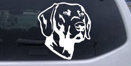 (White-Labrador Retriever Animals Decal Sticker - Die Cut Decal Bumper Sticker For Windows, Cars, Trucks, Laptops, Etc.)
