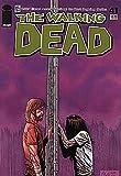 Walking Dead (2003 series) #41