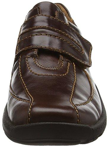 Seibel scarpe Josef Arthur Marrone Uomo 0dxxqAaz
