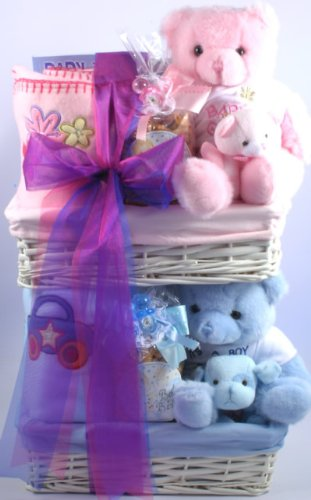 Newborn Twins Celebration | Twins Baby Gift Basket by Organic Stores