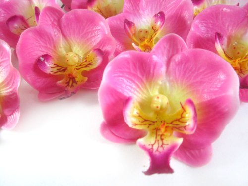 50-Small-Pink-Phalaenopsis-Orchid-Silk-Flower-Heads-2-Artificial-Flowers-Heads-Fabric-Floral-Supplies-Wholesale-Lot-for-Wedding-Flowers-Accessories-Make-Bridal-Hair-Clips-Headbands-Dress