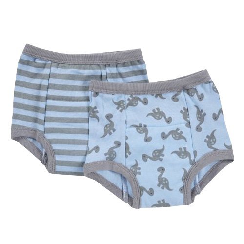 I play. Reusable Absorbent Training Underwear (2 pack) Grey Dino, 4T