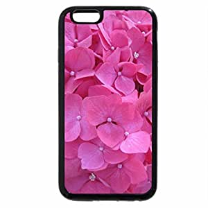 iPhone 6S Plus Case, iPhone 6 Plus Case, Earth laughs in Flowers 01
