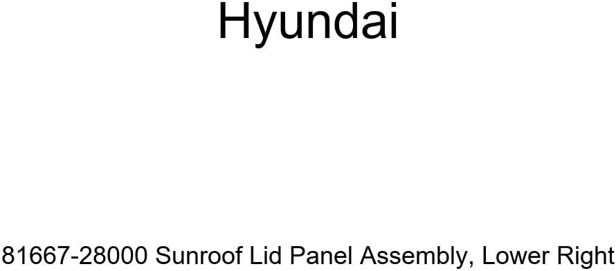 Genuine Hyundai 81667-28000 Sunroof Lid Panel Assembly Lower Right