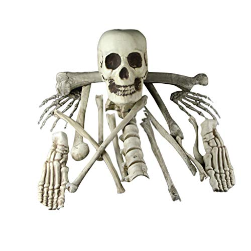 Fan-Ling Halloween Props Party Decoration Human Skull Skeleton Anatomical,Halloween Skeleton,Halloween Props Decoration Party, Best Halloween Decoration,Plastic Material (A)
