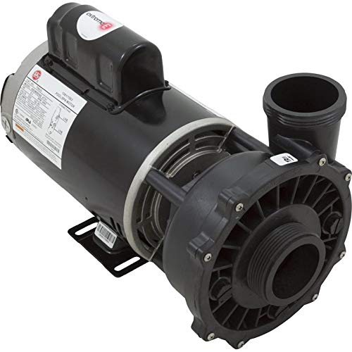 Waterway Plastics 3711621-1D Executive 56 Frame 4 hp Spa Pump, 230 V