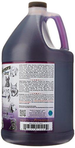 Double K Alpha White Shampoo, 3.8 Liter 2