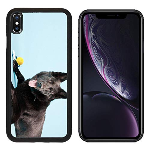 Liili Premium Apple iPhone XR Aluminum Backplate Bumper Snap Case Black German Shepard Dog with Yellow Toy Ball Isolated Light Blue Studio Shot Photo 20280734