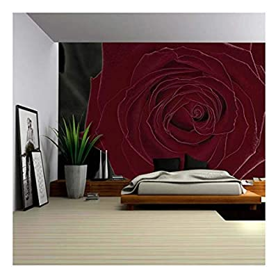 Delightful Print, Green Leaves Behind a Beautiful Rich Red Rose Wall Mural, Classic Design