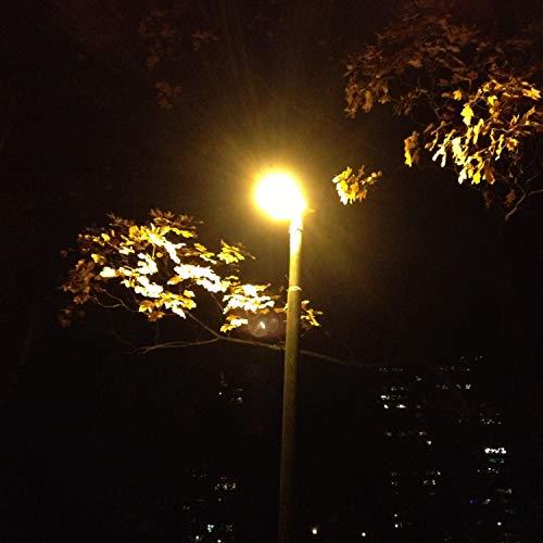 Spotlight Vol 1 Reframed Spaces