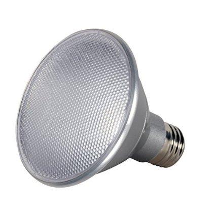 Led Reflectr Bulb 1000l