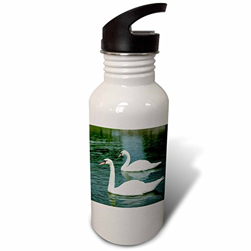 De Water Tour France Bottle (3dRose Danita Delimont - Swans - Swans in a pond at Chateau Villandry near Tours, Loire Valley, France - Flip Straw 21oz Water Bottle (wb_277364_2))