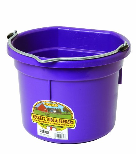 Little Giant Flat-Back Dura-Flex Plastic Bucket, 8-Quart, Purple (Back Feeder)