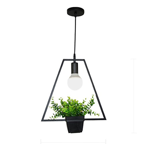 Bestmemories Retro Vintage Style Ceiling Pendant Lamp Flower Pot Wall Lamp Sconce Hanging Plant Iron Wall Mounted Fake Plants Vase Hanging Plant Basket Bottle Light Fixture without Light Source (D) - Iron Wall Mounted Sconce