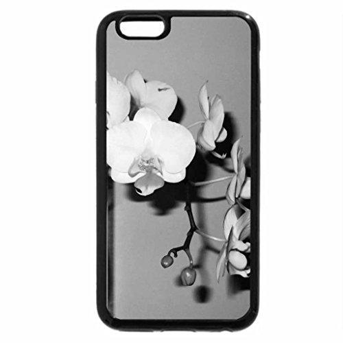iPhone 6S Plus Case, iPhone 6 Plus Case (Black & White) - Flowers Phalaenopsis