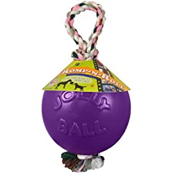 Jolly Pets 4.5-Inch Romp-n-Roll, Purple