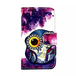 DUR Big Eyes Owls Pattern PU Leather Full Body Case with Stand and Card Slot and Money Holder for iPhone 4/4S