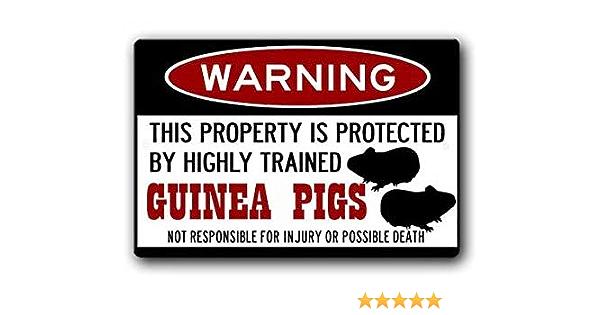 Guinea Pig cage accessories 12 x 8 inch Aluminum Warning Sign Guinea Pigs Warning Sign Guinea Pig Gift