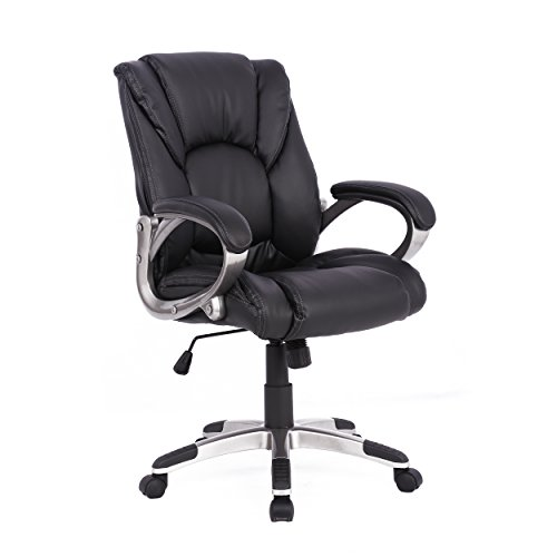41BckMUKCXL - Soges Desk Chair Leather