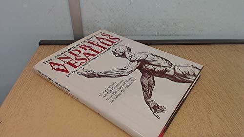 The Anatomical Drawings Of Andreas Vesalius