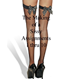 Sissy Assignments 1 thru 10 (The Making of a Sissy)