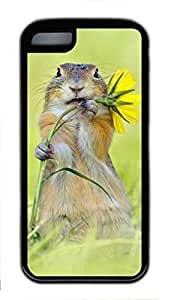 DIY Single Back Case Cover For iPhone 5C With Squirrel Pick Flower