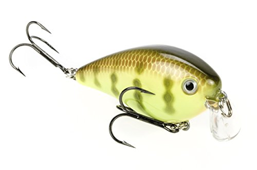 Crankbait Perch (Strike King KVD 1.5 Shallow Square Bill Crankbait, Chartreuse Perch)