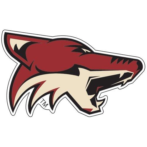 Wincraft NHL Arizona Coyotes Premium Acrylic Carded Magnet