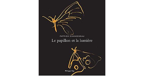 2a33dd941 Le Papillon et la lumière (ROMAN FRANCAIS) (French Edition) - Kindle  edition by Patrick Chamoiseau, Ianna Andréadis. Literature & Fiction Kindle  eBooks ...