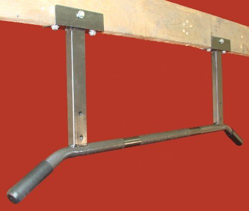 Ceiling Mount Chin Up Bar