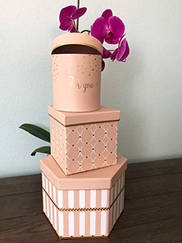 [USA-SALES] Premium Quality Mixed Shapes Flower Box, Gift Boxes for Luxury Flower and Gift Arrangements, Set of 3 pcs, with Lids, Size (S/M/L) (Powder)