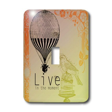 3dRose LLC lsp_79179_1 Live in The Moment Vintage Bird and Hot Air Balloon Single Toggle Switch