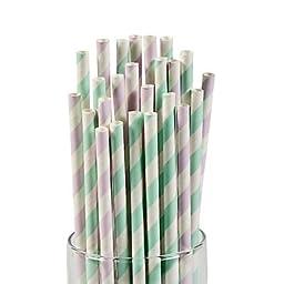 Lilac & Mint Paper Straws 2 pack
