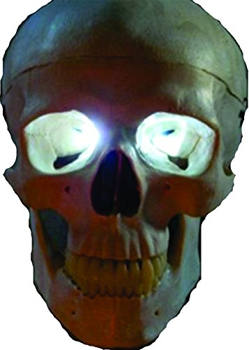 White Led Eyes For Mask, Skulls and Halloween Props ()