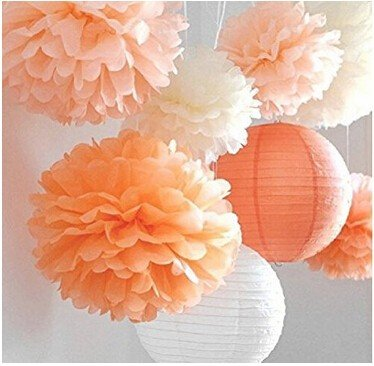 Since Set of 8 Pcs Mixed Peach Ivory Orange Tissue Paper Pom Poms Pompoms and Paper Lantern Wedding Birthday Party Baby Girl Room (Baby Shower Decoratios)