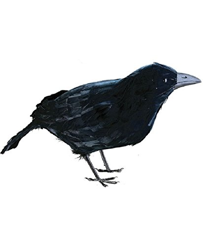 One Feathered Raven Crow 4 1/2