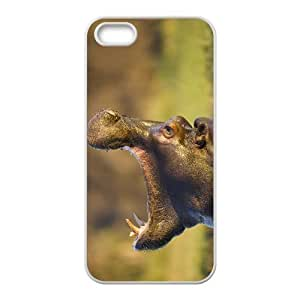 Customized case Of Hippo Hard Case for iPhone 5,5S