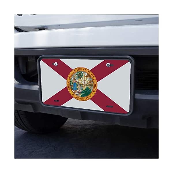 Florida-State-Flag-Novelty-Metal-Vanity-License