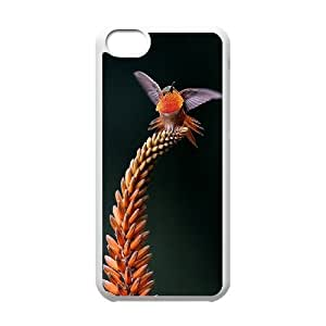 Beautiful HummingbirdPattern Hard Case Cover for Iphone Case 5C HSL416866