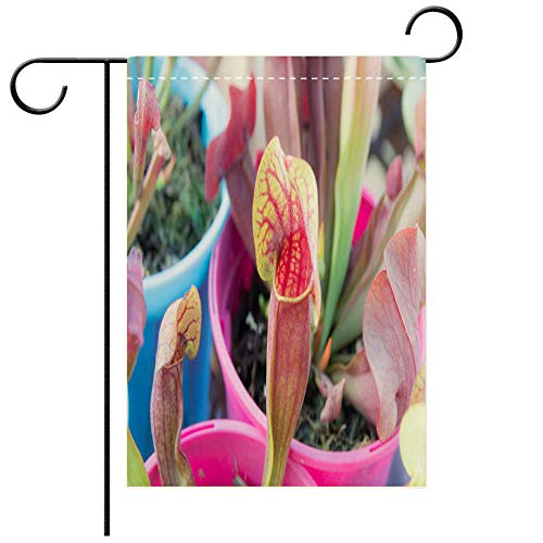 BEICICI Garden Flag Double Sided Decorative Flags Tropical Pitcher Plant with Many Flower Cups Best for Party Yard and Home Outdoor ()