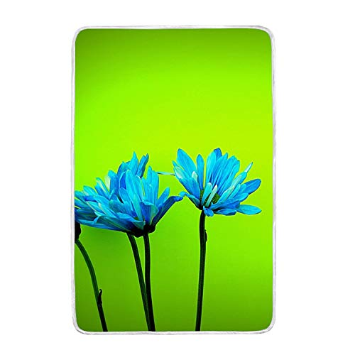suhongliang Throw Blanket 3D Style Design with Blue Daisy Fl