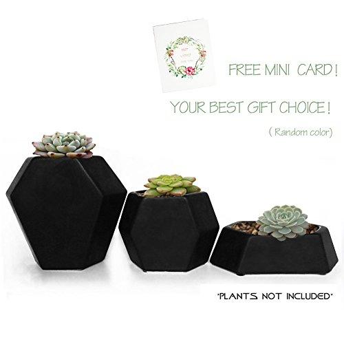 Ceramic Small Collection Geometric Planter( 3 Pack-Black) Hexagon Succulent Plant Pots/Planter/Container (Pots Ceramic Black Garden)