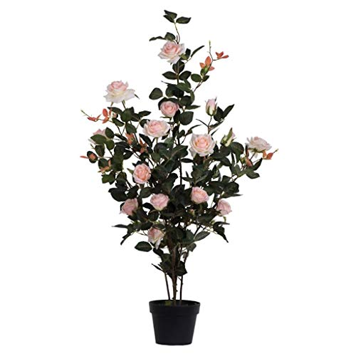 (Vickerman Rose Everyday Bush 45