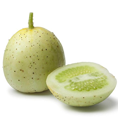 Cucumber 'Crystal Apple' (CucumisSativus) Vegetable Plant Heirloom, 20 Seeds (Apple Cucumber Seeds)