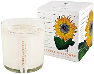 product image for Sweet Sunflower Soy Candle with Plantable Box