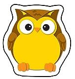 Carson Dellosa – Colorful Owls Mini Colorful
