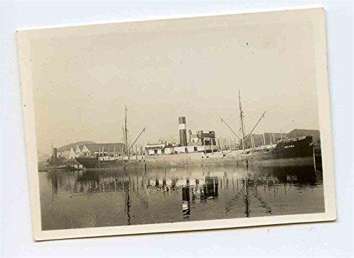 S S Balticia Photograph Swedish Cargo Ship 1936