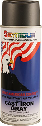Great American Colors Multi-Purpose Spray Enamel, 16 fl. oz., Cast Iron Gray (Paint Furniture Spray Colors)